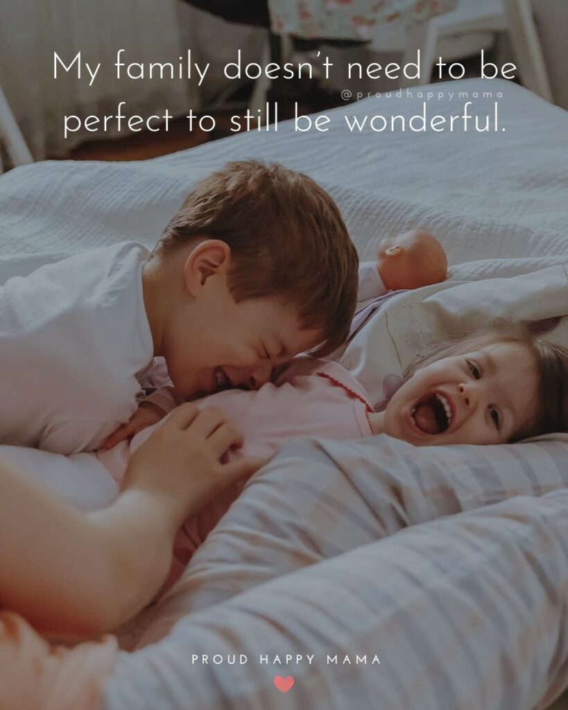 Family Is Happiness Quotes | My family doesn't need to be perfect to still be wonderful.