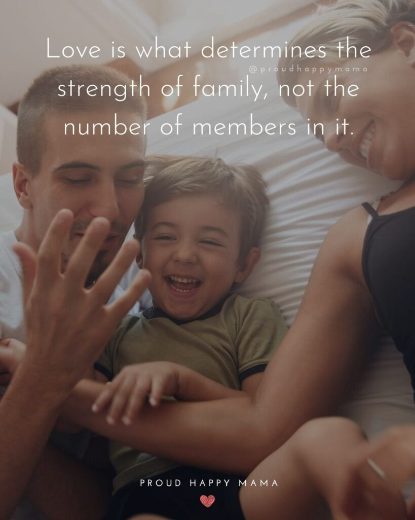 Love Quotes To Family | Love is what determines the strength of family, not the number of members in it.