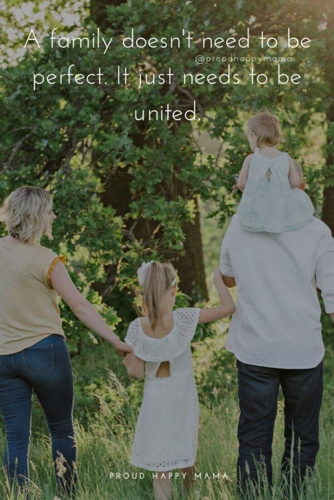 Family Picture Quotes | A family doesn't need to be perfect. It just needs to be united.
