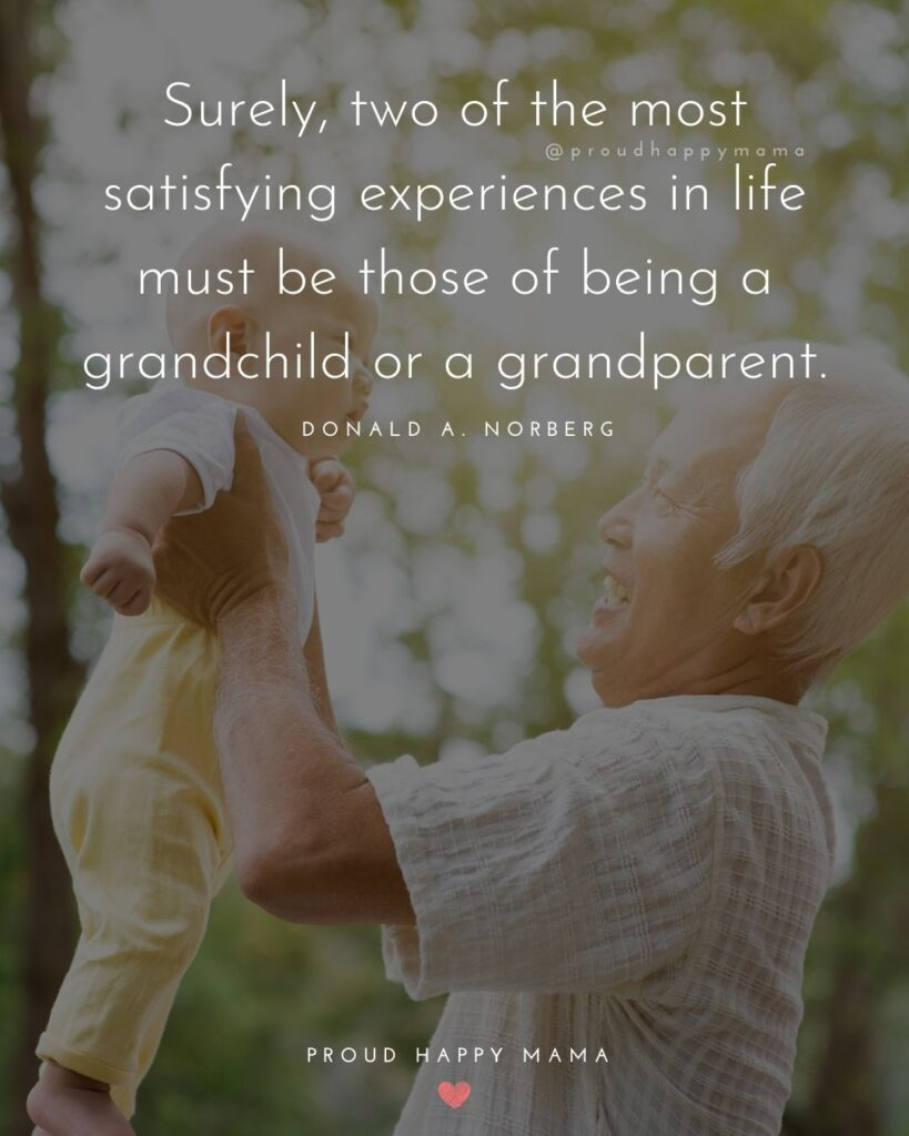 Grandparent Quotes – Surely, two of the most satisfying experiences in life must be those of being a grandchild or a