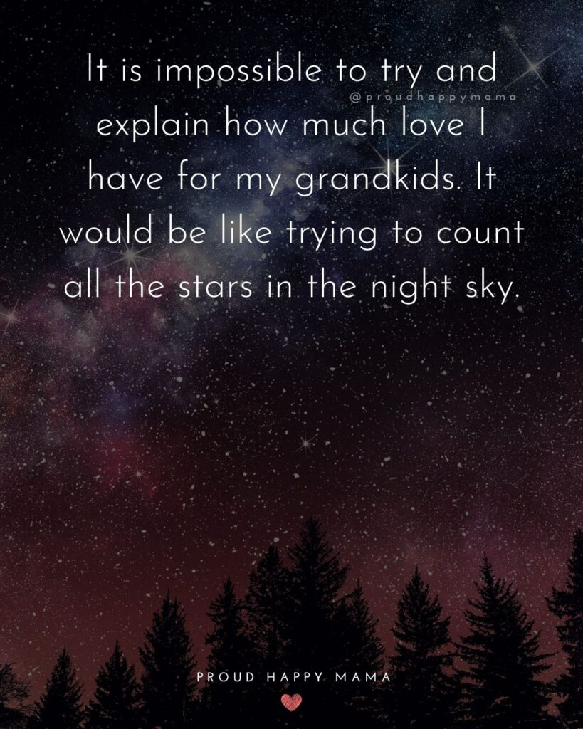 Great Grandparents Quote | It is impossible to try and explain how much love I have for my grandkids. It would be like trying to count all the stars in the night sky.