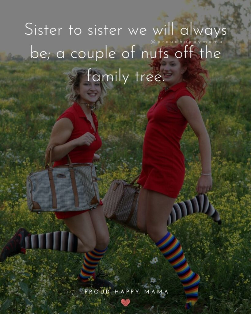 Sister Quotes - Sister to sister we will always be, a couple of nuts off the family tree.