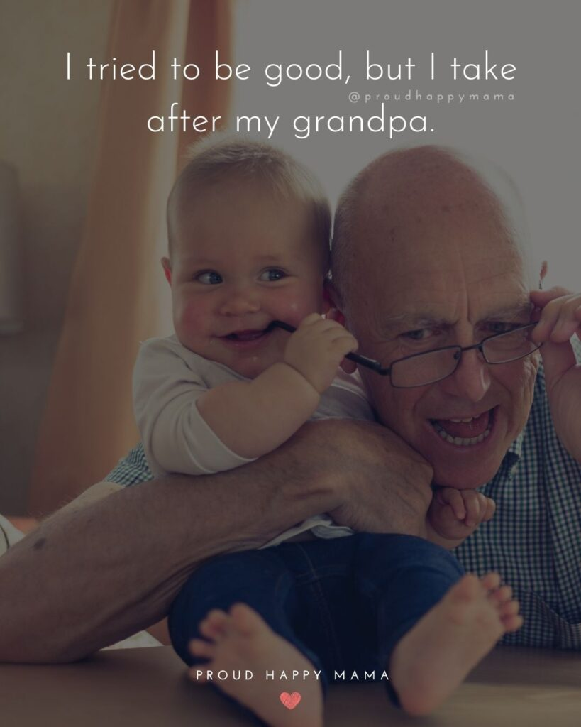 Grandpa Quotes - I tried to be good, but I take after my grandpa.