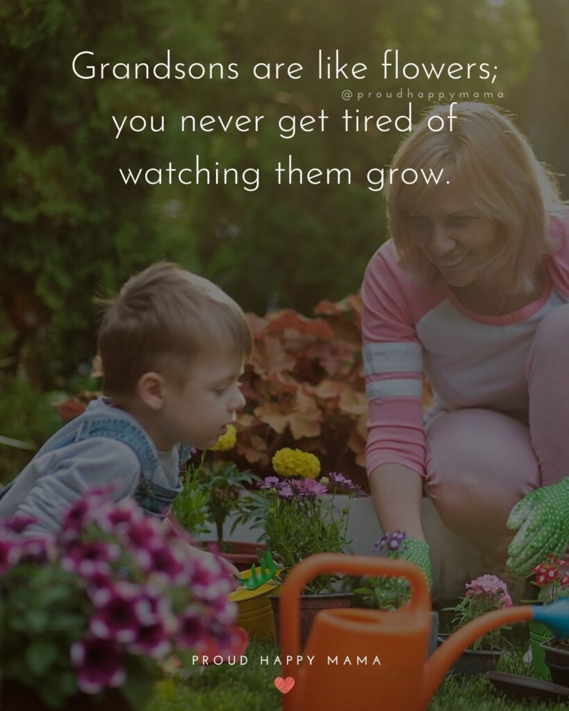 Grandson Quotes - Grandsons are like flowers; you never get tired of watching them grow.