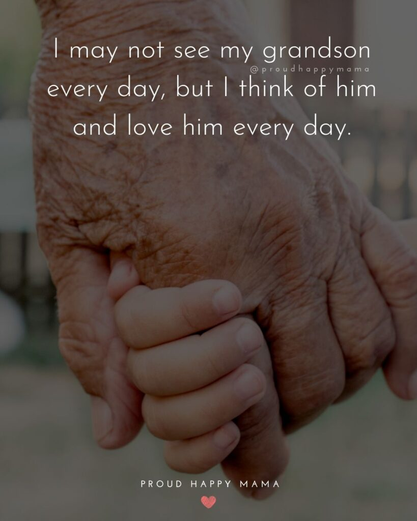 Grandson Quotes - I may not see my grandson every day, but I think of him and love him every day.