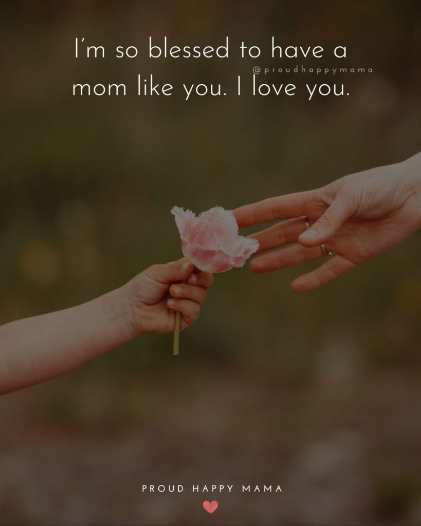 I Love You Mom Quotes - Im so blessed to have a mom like you. I love you.