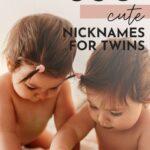 Cute Nicknames For Twin Babies