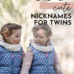 Cute Nicknames For Twins