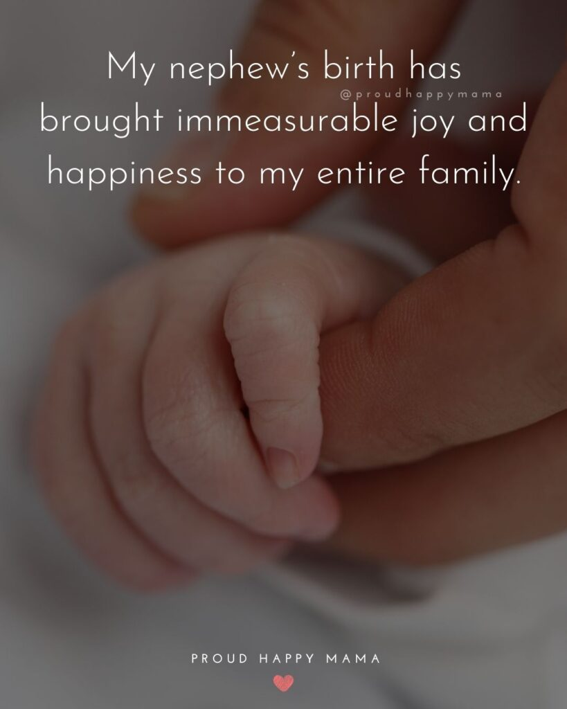 Nephew Quotes - My nephews birth Has brough immeasurable joy and happiness to my entire family.
