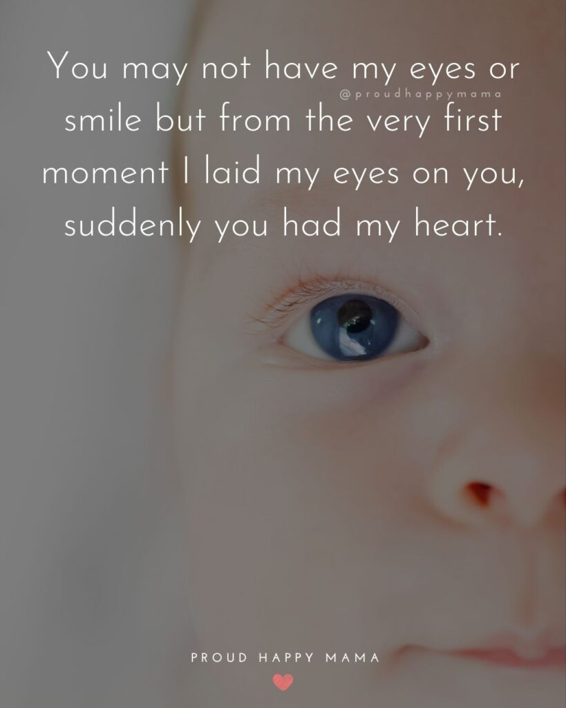 Niece Quotes - You may not have my eyes or smile but from the very first moment I laid my eyes on you, suddenly you had my heart.