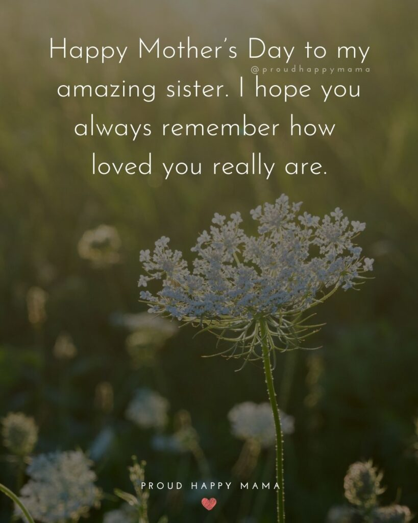 Happy Mothers Day Sister Quotes - Happy Mother's Day to my amazing sister. I hope you always remember how loved you really are.'