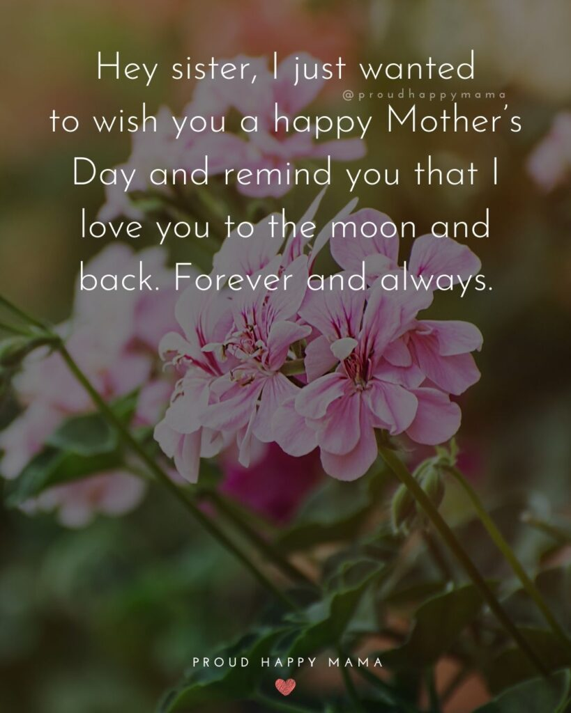 Happy Mothers Day Sister Quotes - Hey sister, I just wanted to wish you a happy Mother's Day and remind you that I love you to the moon