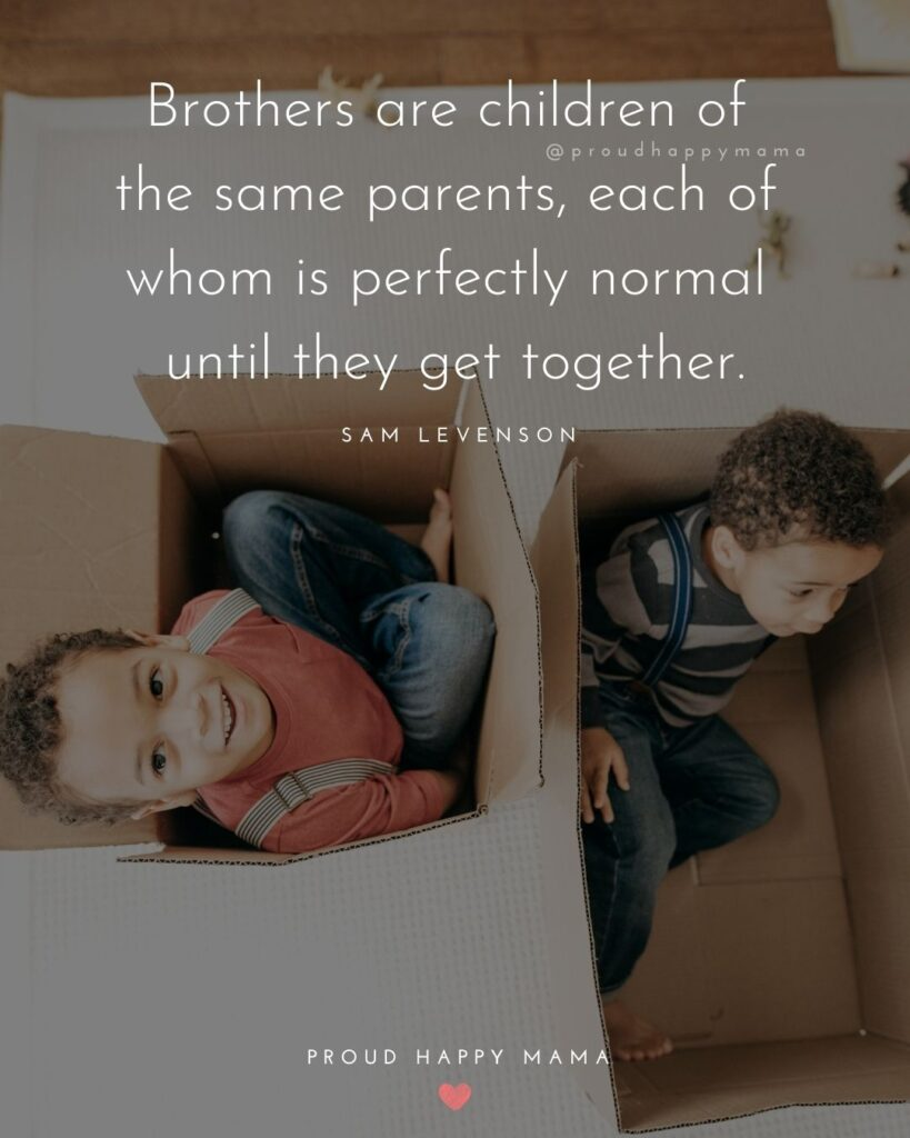 Brother Quotes - Brothers are children of the same parents, each of whom is perfectly normal until they get together.' – Sam Levenson
