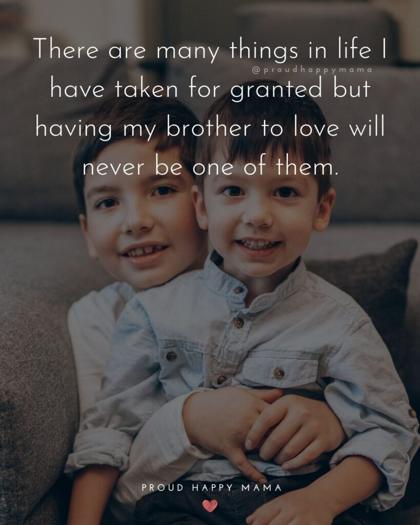 Brother Quotes - There are many things in life I have taken for granted but having my brother to love will never be one of them.'