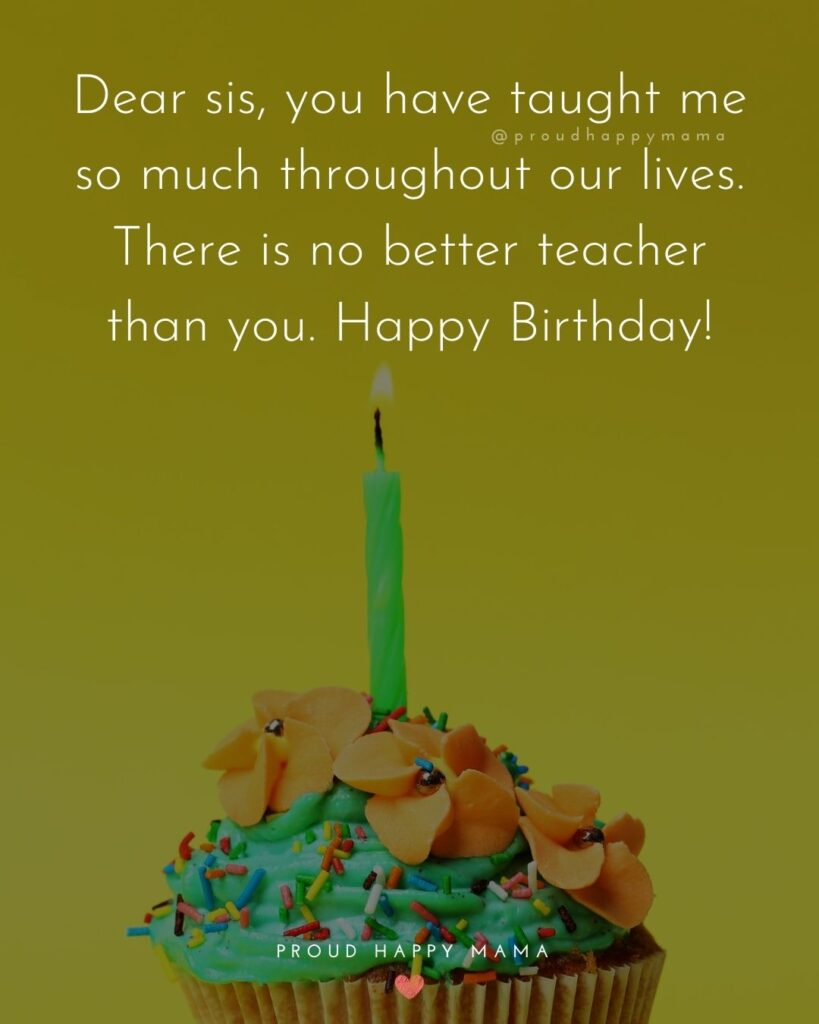 Happy Birthday Wishes For Sister - Dear sis, you have taught me so much throughout our lives. There is no better teacher than you.