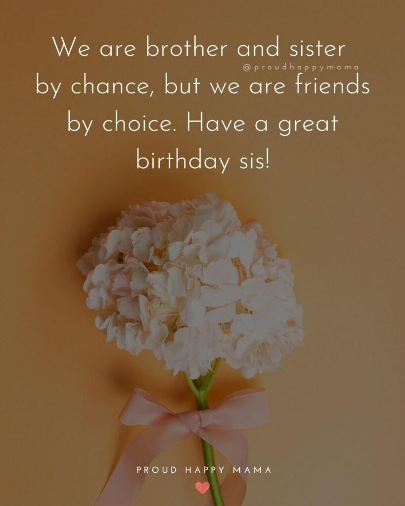 Happy Birthday Wishes For Sister - We are brother and sister by chance, but we are friends by choice. Have a great birthday sis!'