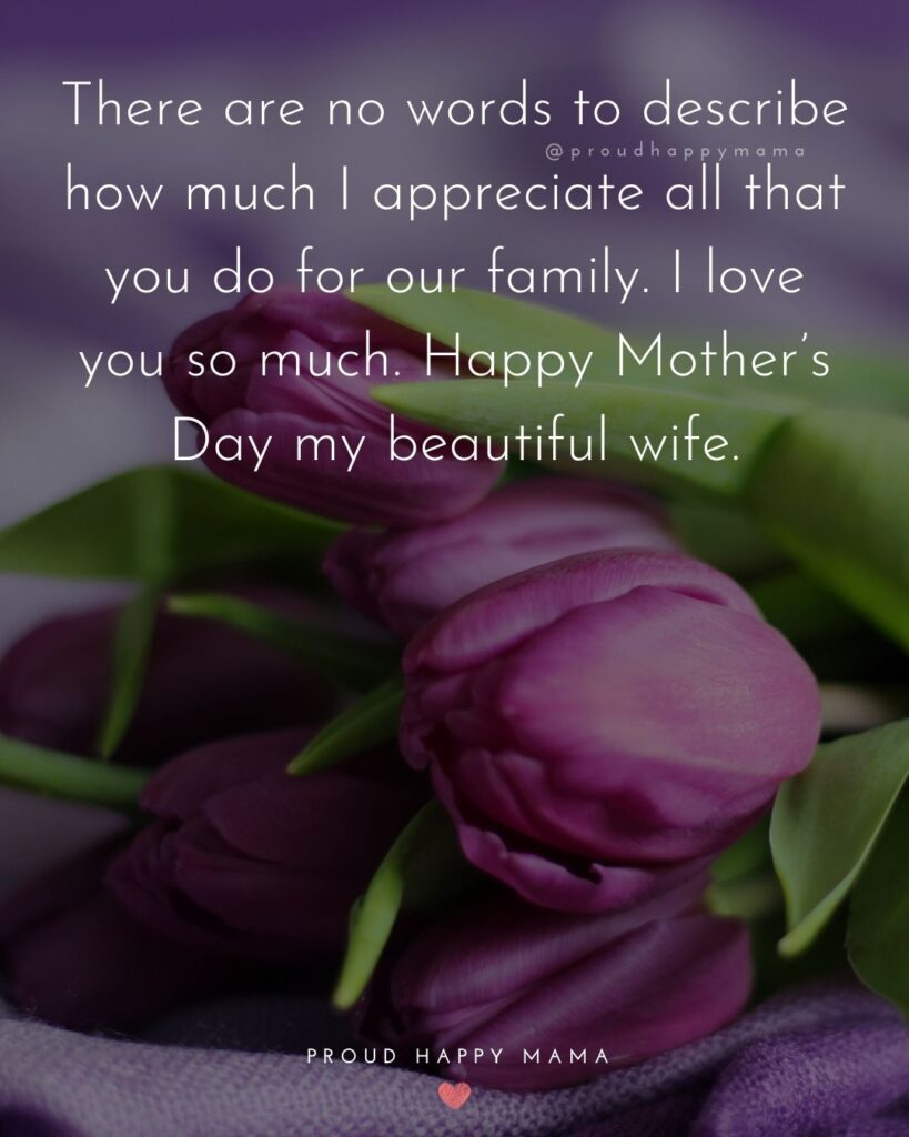 Happy Mothers Day Quotes For Wife - There are no words to describe how much I appreciate all that you do for our family. I