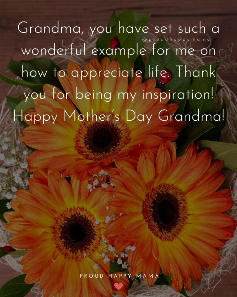 Happy Mothers Day Quotes To Grandma - Grandma, you have set such a wonderful example for me on how to appreciate life.