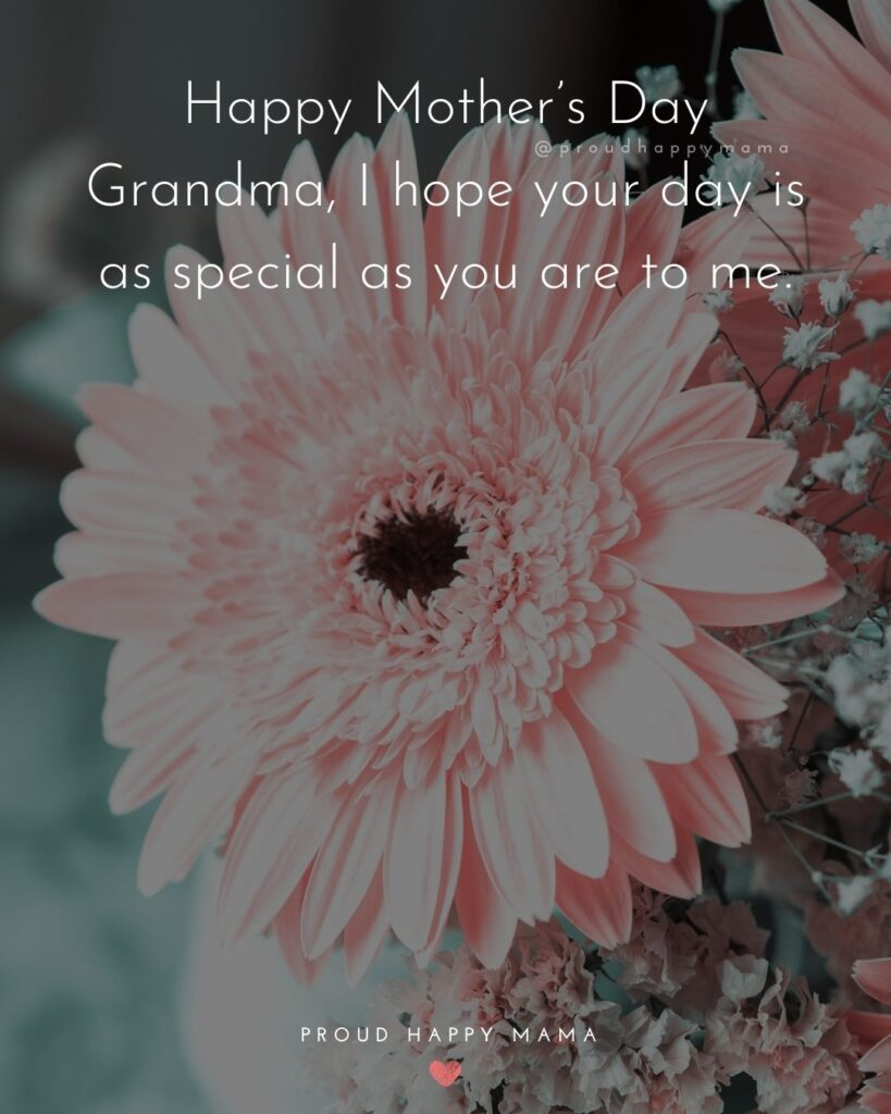 Happy Mothers Day Quotes To Grandma - Happy Mother's Day Grandma, I hope your day is as special as you are to me.'