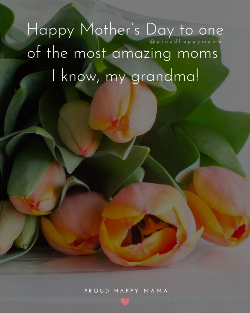 Happy Mothers Day Quotes To Grandma - Happy Mother's Day to one of the most amazing moms I know, my grandma!'