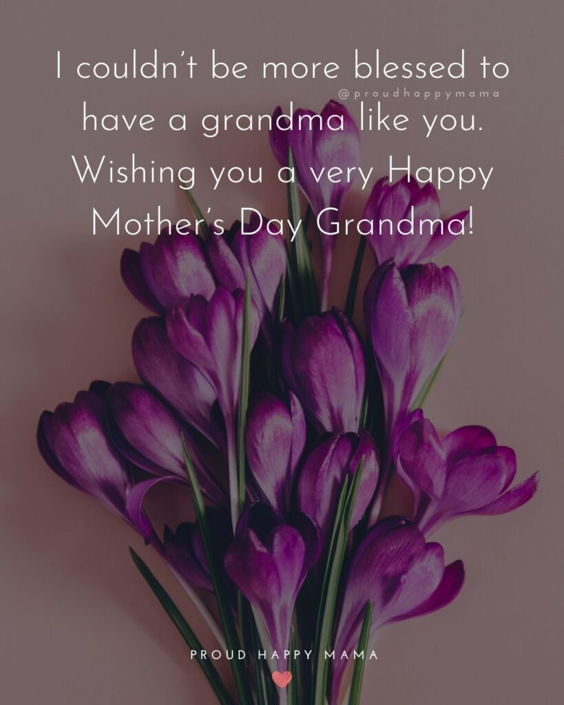 Happy Mothers Day Quotes To Grandma - I couldn't be more blessed to have a grandma like you. Wishing you a very Happy