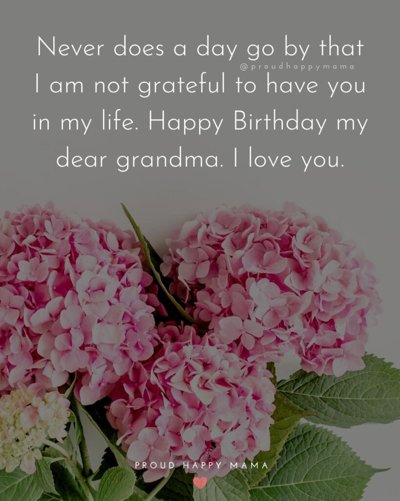 Happy Birthday Grandma Quotes - Never does a day go by that I am not grateful to have you in my life. Happy Birthday my dear