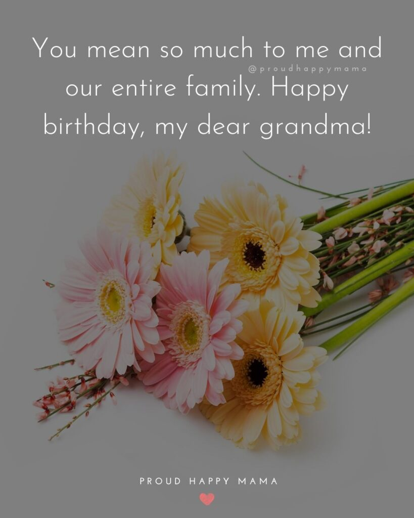 Happy Birthday Grandma Quotes - You mean so much to me and our entire family. Happy birthday, my dear grandma!'
