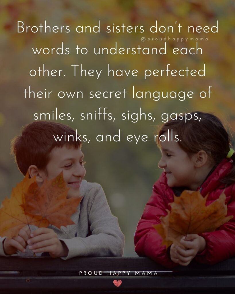 Brother And Sister Quotes - Brothers and sisters don't need words to understand each other. They have perfected their own