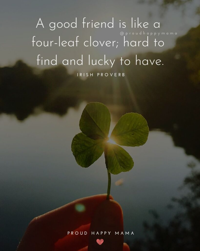 Friendship Quotes - A good friend is like a four-leaf clover; hard to find and lucky to have.' – Irish Proverb