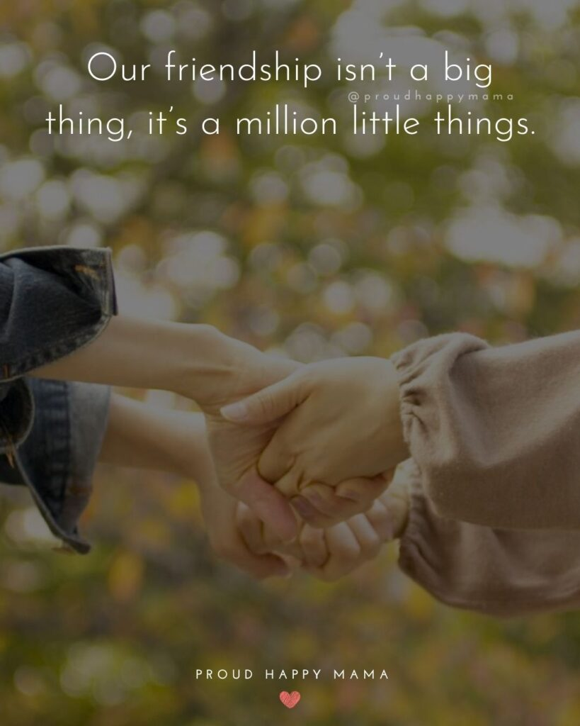 Friendship Quotes - Our friendship isn't a big thing, it's a million little things.'
