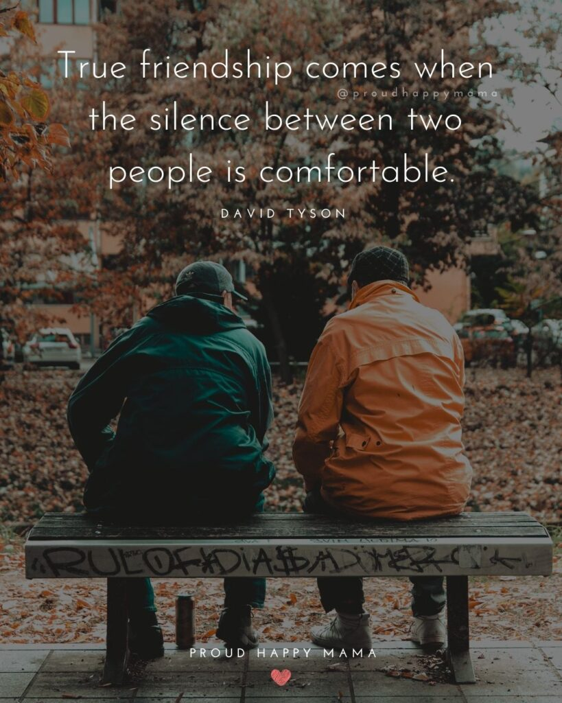 Friendship Quotes - True friendship comes when the silence between two people is comfortable.' – David Tyson
