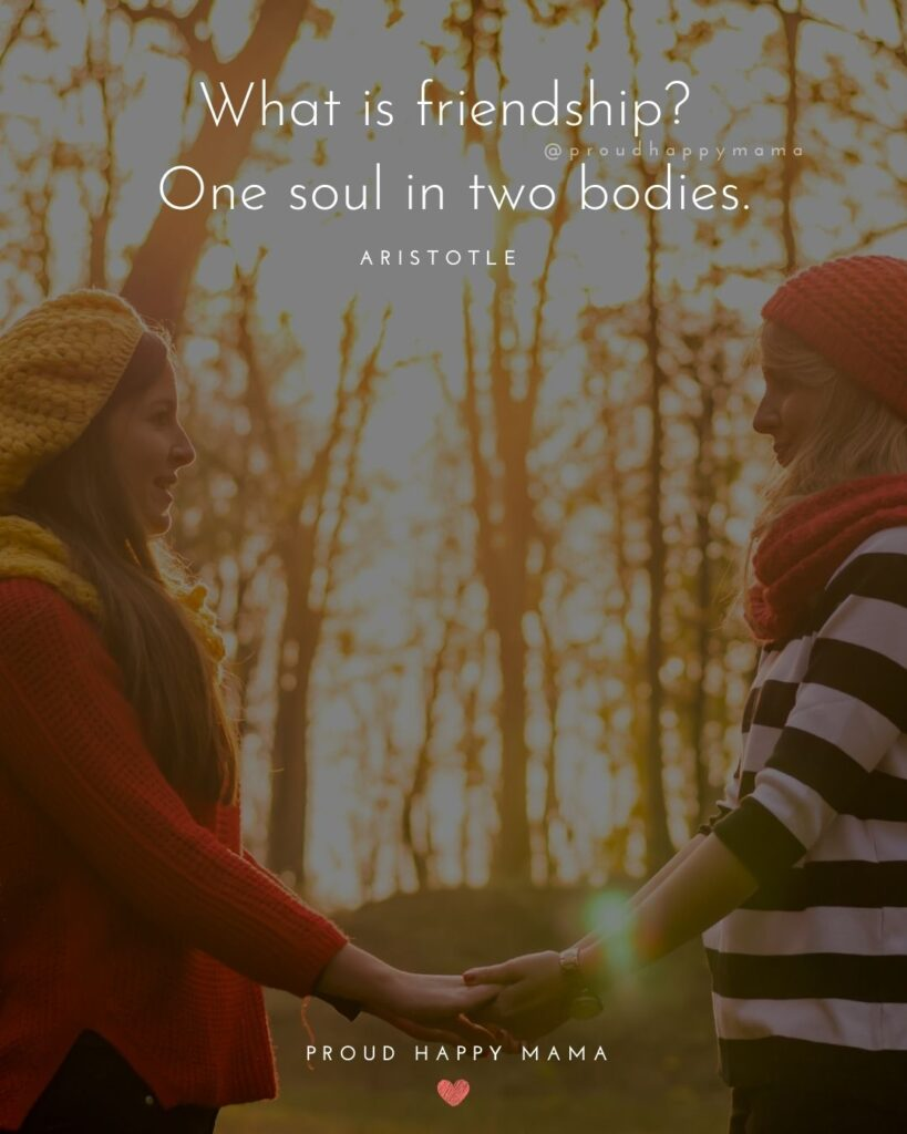 Friendship Quotes - What is friendship? One soul in two bodies.' – Aristotle