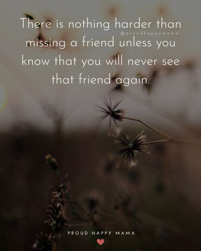 Missing Friends Quotes - There is nothing harder than missing a friend unless you know that you will never see that friend again.'